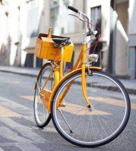 veuve bike tw jan 16
