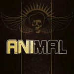 animal66gt's profile picture